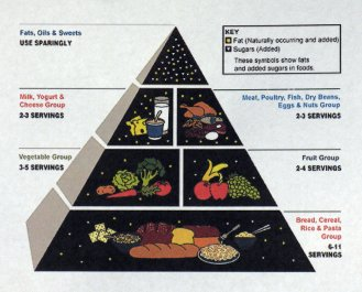 1992 US Food Pyramid